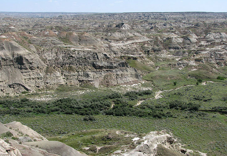 Dinosaur Provincial Park Edmonton